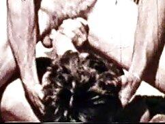 স্বামী পারিবারিক চুদাচুদি ও স্ত্রী,