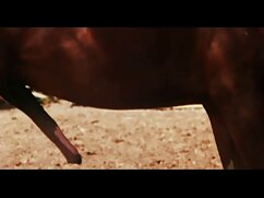 ডিনো আঙ্গুলের, প্রাকৃতিক ছেলে চোদা চৌদী